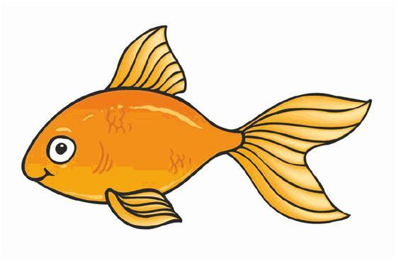 Cute Goldfish Cartoon